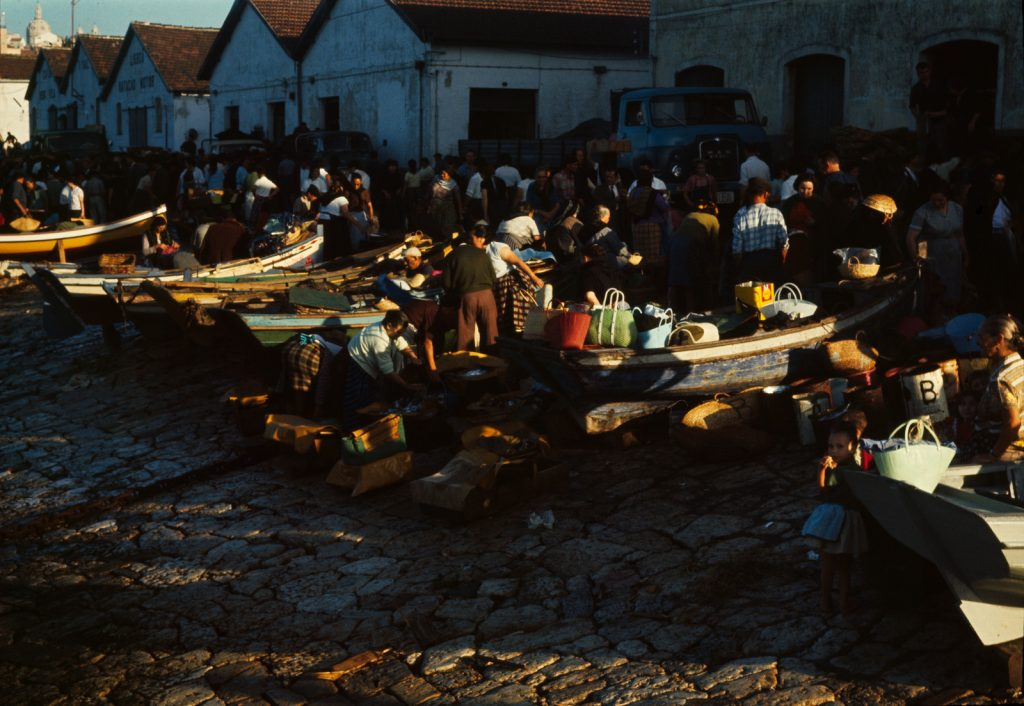 1964 rok, fot. Jadwiga Nowak-Jeziorańska (Archiwum Jana Nowaka-Jeziorańskiego. Zakład Narodowy im. Ossolińskich)