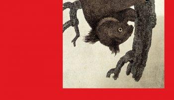 """""""Koala"""" Lukasa Bärfussa – powiastka filozoficzna"""